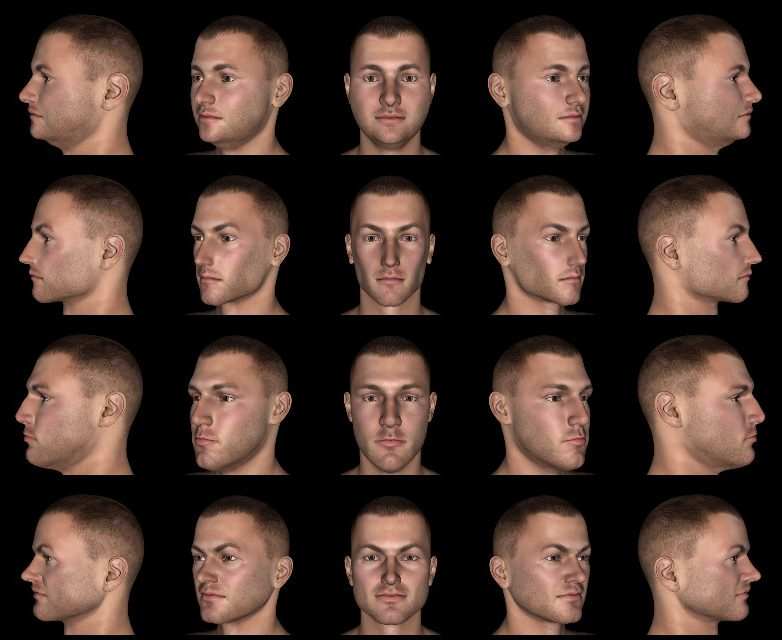 facesviewpoint